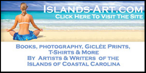 IslandsArtBeachClubAd