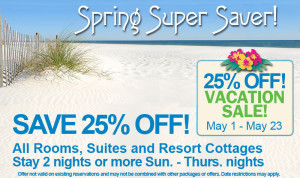 Spring-Super-Saver Discount